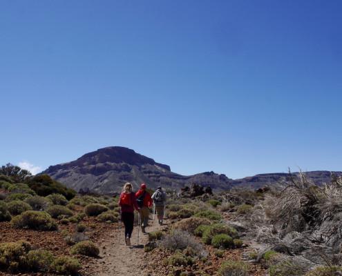 teide trekking (2)